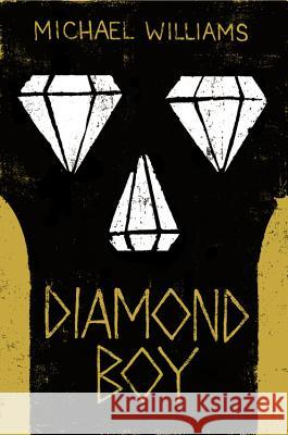 Diamond Boy Michael Williams 9780316320689