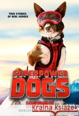 Superpower Dogs: Henry: Avalanche Rescue Dog Cosmic 9780316453622