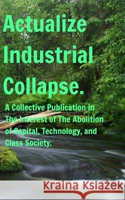 Actualize Industrial Collapse - A Collective Manifesto Felix W Artxmis 9780368841330