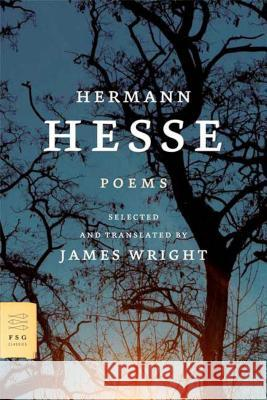 Poems Hermann Hesse James Wright James Wright 9780374526412
