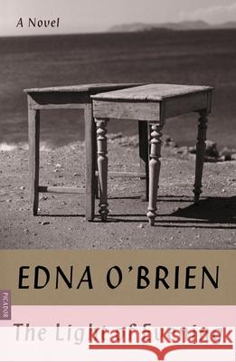 The Light of Evening Edna O'Brien 9780374538781