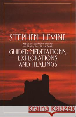 Guided Meditations, Explorations and Healings Stephen Levine 9780385417372