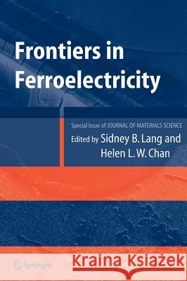 Frontiers of Ferroelectricity: A Special Issue of the Journal of Materials Science Sydney B. Lang Helen L. W. Chan 9780387380377