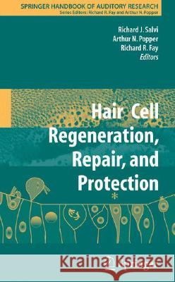 Hair Cell Regeneration, Repair, and Protection Arthur N. Popper Richard R. Fay 9780387733630