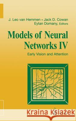 Models of Neural Networks IV: Early Vision and Attention Leo Va Eytan Domany Jack Cowan 9780387951058
