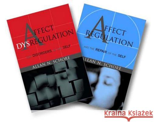 Affect Regulation and the Repair of the Self & Affect Dysregulation and Disorders of the Self Two-Book Set Allan N. Schore 9780393704082
