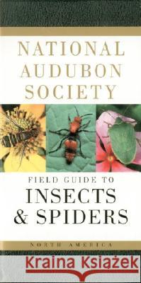 National Audubon Society Field Guide to Insects and Spiders: North America Lorus Milne Susan Rayfield Margery Milne 9780394507637