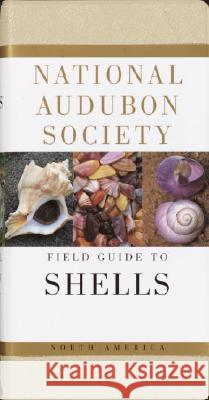 National Audubon Society Field Guide to North American Seashells Harald A. Rehder James M., Jr. Carmichael 9780394519135