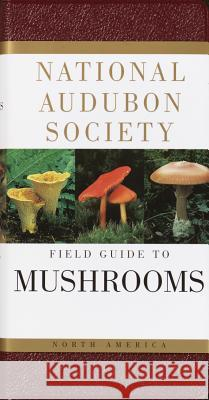 National Audubon Society Field Guide to North American Mushrooms Gary H. Lincoff 9780394519920