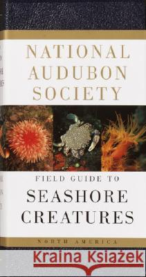National Audubon Society Field Guide to Seashore Creatures: North America Norman A. Meinkoth 9780394519937
