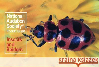 National Audubon Society Pocket Guide: Insects and Spiders Audubon Society                          National Audubon Society                 John, Jr. Farrand 9780394757926