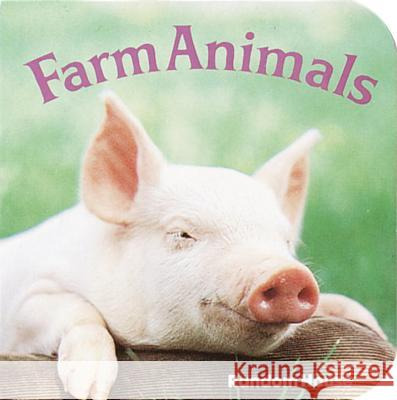 Farm Animals Phoebe Dunn 9780394862545