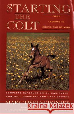 Starting the Colt Mary Twelveponies 9780395631270