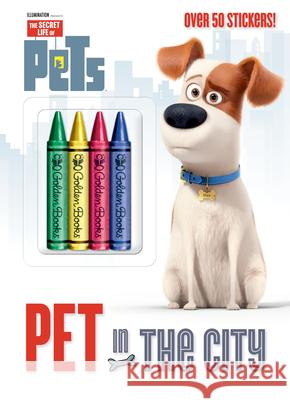 Pet in the City (Secret Life of Pets) Golden Books                             Golden Books 9780399554896