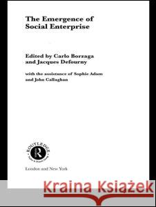 The Emergence of Social Enterprise Carlo Borzaga S. Radosevic 9780415339216