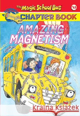 Amazing Magnetism Rebecca Carmi John Speirs Judith Stamper 9780439314329