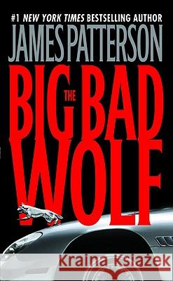 The Big Bad Wolf James Patterson 9780446610223 Warner Books