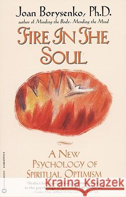Fire in the Soul: A New Psychology of Spiritual Optimism Joan Borysenko 9780446670159
