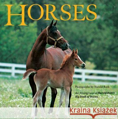 Horses: An Abridgement of Harold Roth's Big Book of Horses Laura Driscoll Margo Lundell Harold Roth 9780448417356