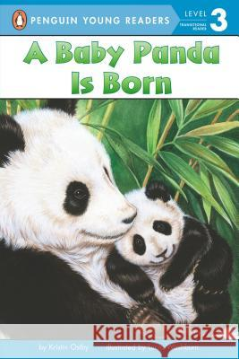 A Baby Panda Is Born Kristin Ostby Lucia Washburn 9780448447209