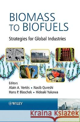 Biomass to Biofuels : Strategies for Global Industries  9780470513125