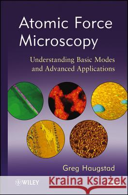 Atomic Force Microscopy : Understanding Basic Modes and Advanced Applications Greg Haugstad   9780470638828