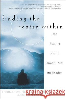 Finding the Center Within: The Healing Way of Mindfulness Meditation Thomas Bien Beverly Bien 9780471263944