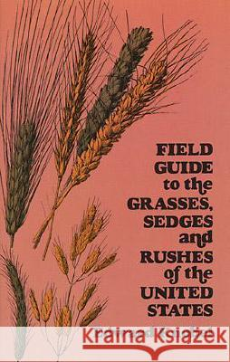 Field Guide to the Grasses, Sedges, and Rushes of the United States Edward Knobel 9780486235059