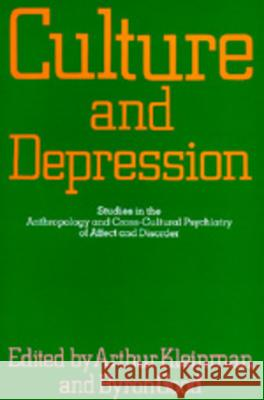 Culture and Depression: Studies in the Anthropology and Cross-Cultural Psychiatry of Affect and Disorder Arthur Kleinman Byron Good A. Kleinman 9780520058835 University of California Press