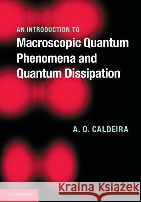 An Introduction to Macroscopic Quantum Phenomena and Quantum Dissipation A  O Caldeira 9780521113755 CAMBRIDGE UNIVERSITY PRESS