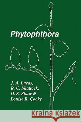 Phytophthora : Symposium of the British Mycological Society, the British Society for Plant Pathology and the Society of Irish Plant Pathologists Held at Trinity College, Dublin September 1989 J. A. Lucas R. C. Shattock D. S. Shaw 9780521189767