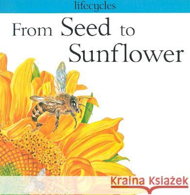 From Seed to Sunflower Gerald Legg Carolyn Scrace 9780531153345