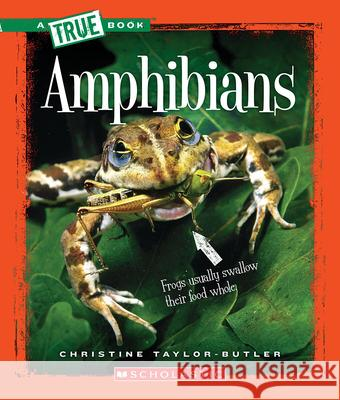 Amphibians Christine Taylor-Butler 9780531223352 Children's Press