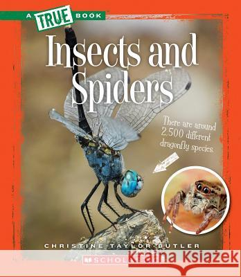 Insects and Spiders Christine Taylor-Butler 9780531223383 Children's Press