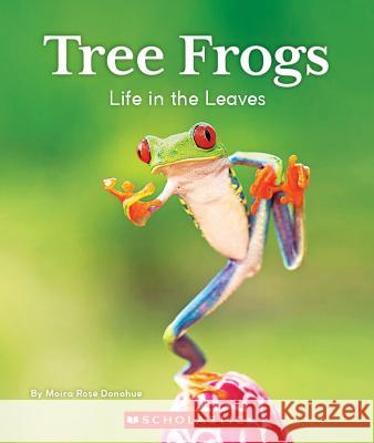 Tree Frogs: Life in the Leaves Moira Rose Donohue 9780531229934