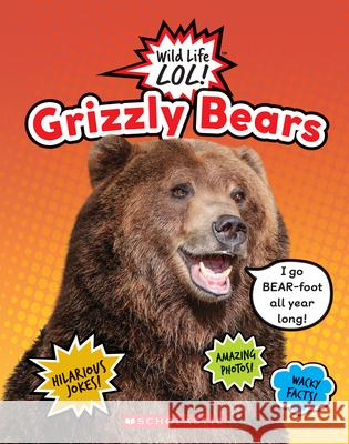Grizzly Bears Hilary Auss 9780531234914