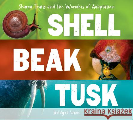 Shell, Beak, Tusk: Shared Traits and the Wonders of Adaptation Bridget Heos 9780544811669 Houghton Mifflin