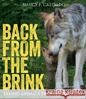 Back from the Brink: Saving Animals from Extinction Nancy Castaldo 9780544953437 Houghton Mifflin