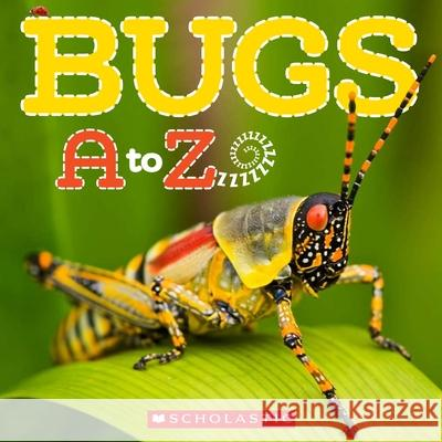 Bugs A to Z Kimberly Bayley Caroline Lawton 9780545273305