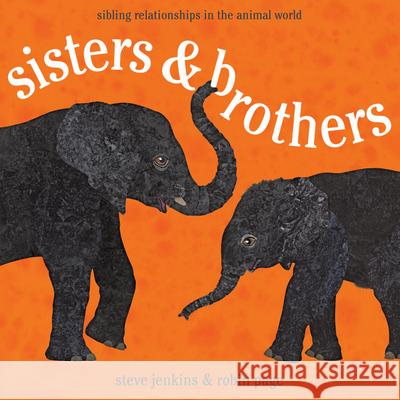Sisters & Brothers: Sibling Relationships in the Animal World Robin Page Steve Jenkins 9780547727387 Houghton Mifflin Harcourt (HMH)