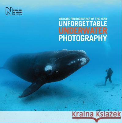 Wildlife Photographer of the Year: Unforgettable Underwater Photography Rosamund Kidma 9780565094560