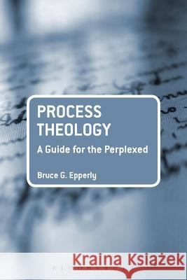 Process Theology : A Guide for the Perplexed BruceG Epperly 9780567596697