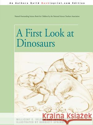 A First Look at Dinosaurs Joyce Hunt 9780595340538
