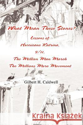 What Mean These Stones? : Lessons of Hurricane Katrina, 9/11, The Million Man March The Millions More Movement Gilbert H. Caldwell 9780595374045