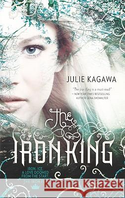 The Iron King Julie Kagawa 9780606149099