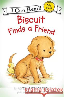 Biscuit Finds a Friend Alyssa Satin Capucilli Pat Schories 9780613073653