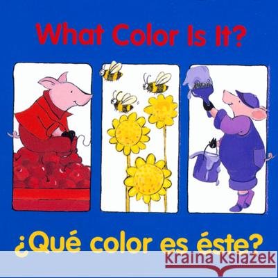 What Color Is It? Pamela Cote 9780618169320
