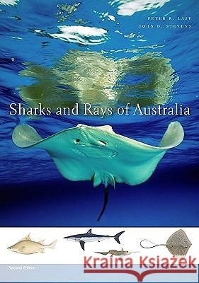 Sharks and Rays of Australia : Second Edition Peter R. Last Stevens Joh P. R. Last 9780674034112