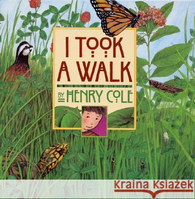 I Took a Walk Henry Cole Henry Cole 9780688151157 Greenwillow Books