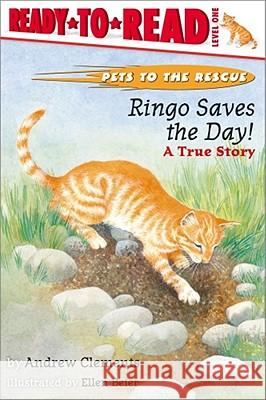 Ringo Saves the Day!: Ringo Saves the Day! Andrew Clements Ellen Beier 9780689834394 Aladdin Paperbacks